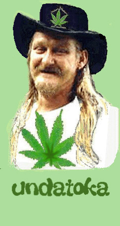The TOKA from downUNDA, CANNABIS CRIMINAL? go to WORDZ and see